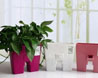 办公室花盆