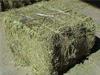 牛羊兔用豆秸草粉