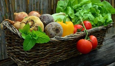 食材B2B平台天平派与百度糯米达成合作